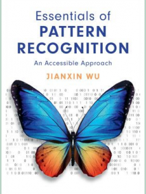 Essentials of Pattern Recognition An Accessible Approach